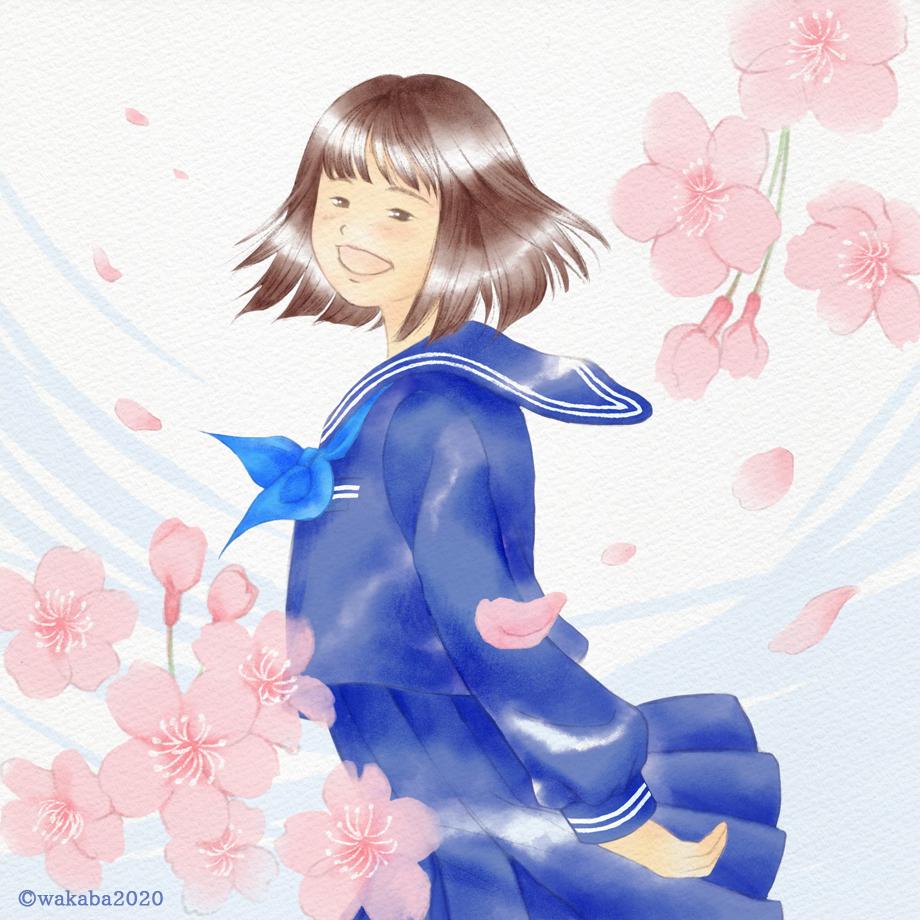 卒業入学お祝いイラスト:桜